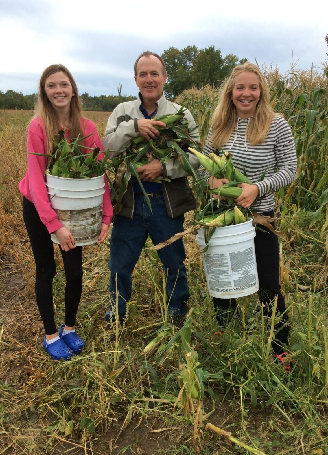 Fall harvest – husking corn inMN