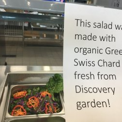 Discovery Elementary School (VA) highlights when any local ingredient is used in their school menus or salad bars.