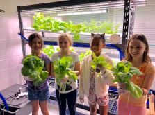 Harvesting produce is one of the lessons learned from the vertical garden.
